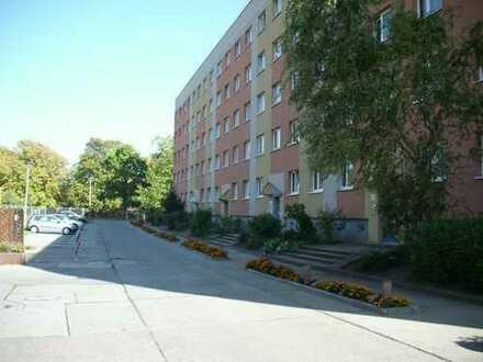 Renovierte 3-Raum Wohnung mit Balkon