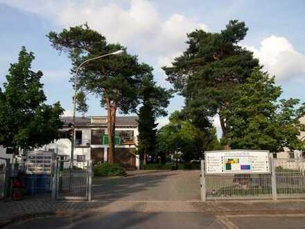Neu renoviert: Loft in Griesheim