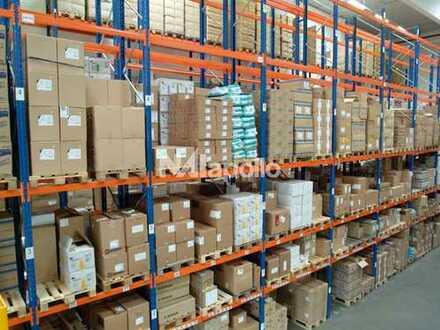 2 Rampentore | Regaliert | 6 m UKB | 900 Palettenstellplätze