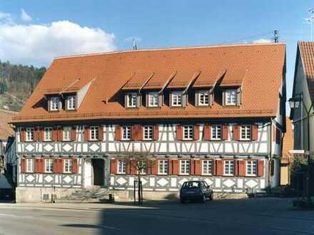 Großzügige 3-Zimmer-Wohnung in historischem Ambiente