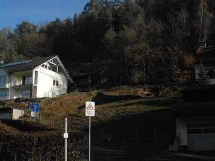 Baugrundstück mit Wald- und Wiesengrundstück, Hanglage im Naturpark Spessart am Waldrand