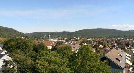 Genießen Sie den Blick über Ettlingen bis in den Schwarzwald und die Vogesen
