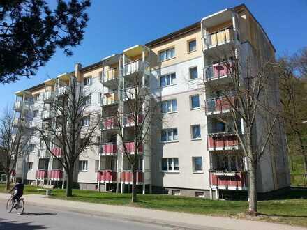 3 Raum Wohnung mit Balkon^