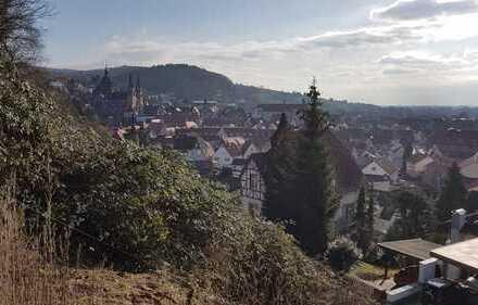 **Heppenheim! Sonniges Grundstück am Hang **