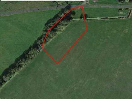 Gebotsverfahren: Landwirtschaftsfläche in Falkenthal