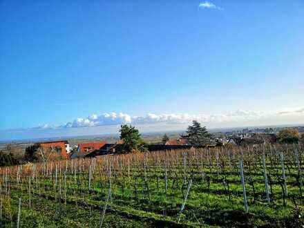 PROVISIONSFREI | Großes Anwesen | Zwei Scheunen | Traumhafter Garten