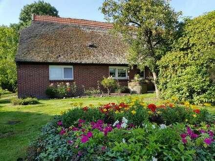 Idyllisches Bauernhaus (Resthof) in fast direkter Lage zur Nordsee!