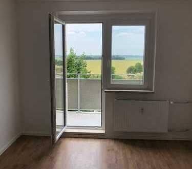 Tolle renovierte Wohnungen mit Balkon und Einbauküche!!!