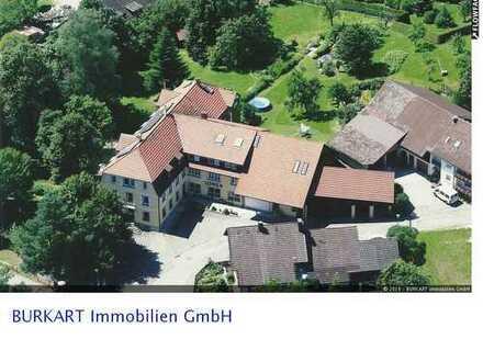 """Ein Haus mit Geschichte – Hotel und Tagungshaus """"Löwen"""" in Zell i. W. (Gresgen)"""