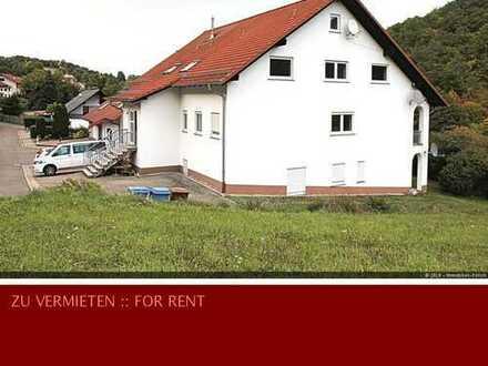 Großzügige, moderne Maisonette Wohnung in Niederkirchen! Fußbodenheizung!