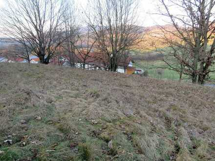 Baugrundstück in ruhiger Randlage mit Weitblick in einem Stadtteil von Viechtach