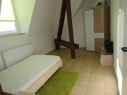 *Renoviert und für Dich gut eingerichtet! Modernes Stuzubi-Wohnen in Freiberg*