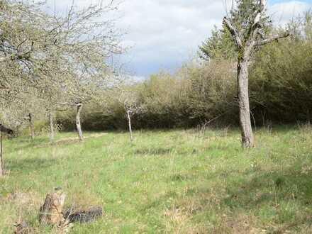 Freizeitgrundstück naturnah am Waldrand