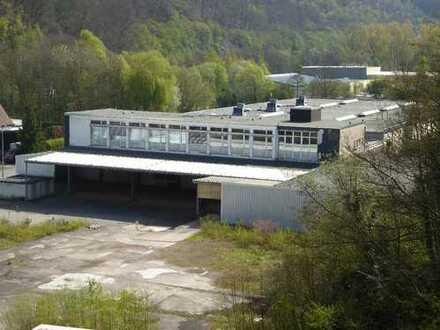 PROVISIONSFREI ca. 18.000m² Gewerbegrundstück mit Hallen + Büros + Rampe in Hagen-Süd zu verkaufen
