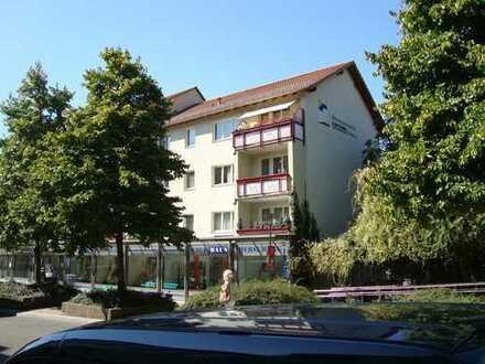 Bin bald wieder zu haben! Ich, kleine hübsche 2 Raum Wohnung suche liebevollen Mitbewohner!