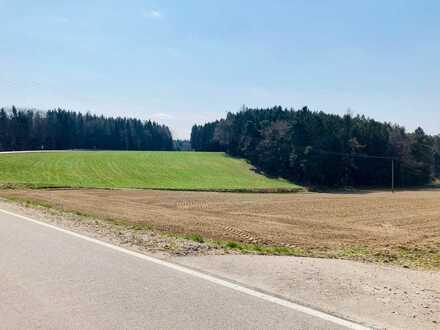 Landwirtschaftliche Fläche zwischen Jetzendorf und Kemmoden