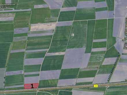 Bieterverfahren über landwirtschaftliche Flächen