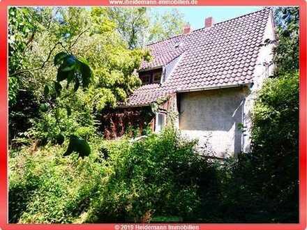 Kleines Einfamilienhaus in bester Lage von Detmold (Nähe Palaisgarten)