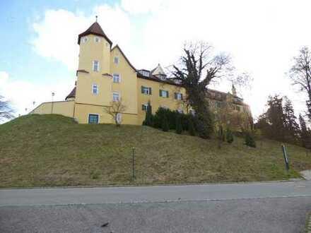 Neuwertige Wohnung im Schloss -2-Zimmer - ZU VERKAUFEN
