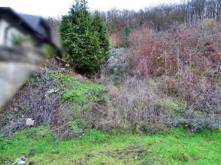 °°° SOMMERANGEBOT °°° Schönes Grundstück mit Baugenehmigung!! - in Assmannshausen °°°