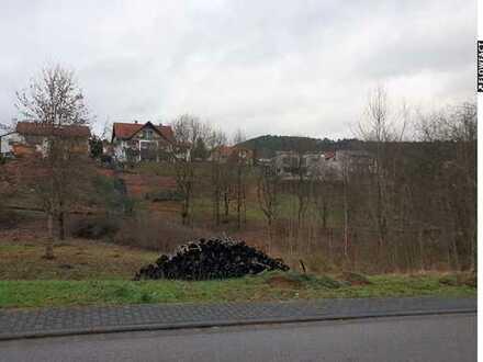 Baugrundstück in Busenberg