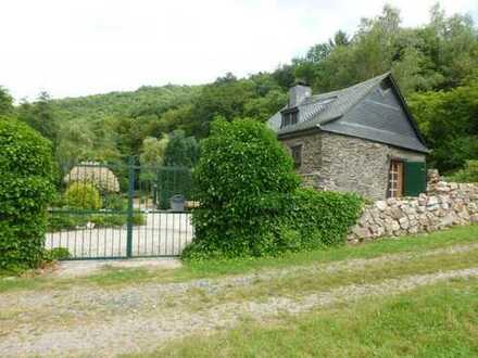 Ohne Nachbarn! Sanierte Bauernmühle mit parkähnlicher Gartenanlage sowie Wiesenfläche.