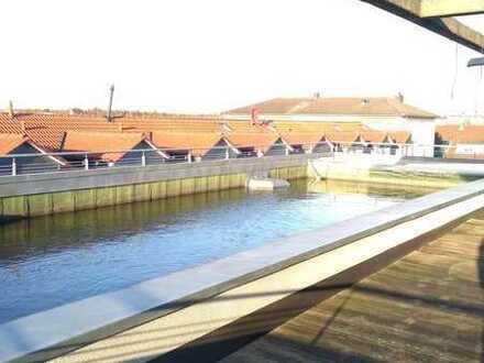 Stilvolles Penthouse mit großer Rundum-Terrasse in Griesheim