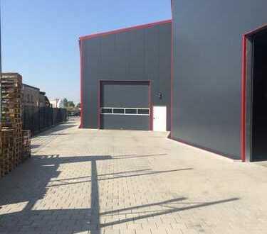 Gewerbehalle mit Büro und Außenfläche in Schifferstadt