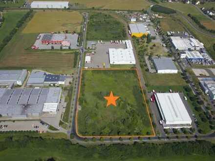 ### Glauchau-Jerisau: Projektentwicklung (Industrie oder Gewerbe) auf der grünen Wiese ###