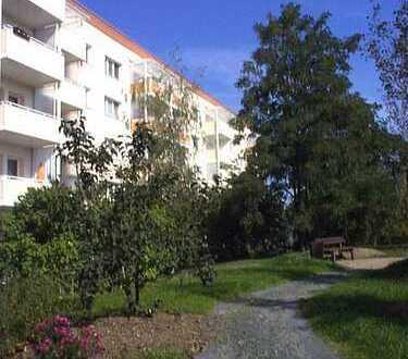 Sanierte 3-Raum-Wohnung mit Balkon im Grünen