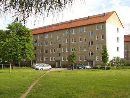 WBG - 3-RWE - ideal für die erste gemeinsame Wohnung-Wohnpaket Pearl!