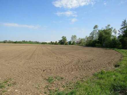 Ackerbaufläche - ca. 3,06 ha