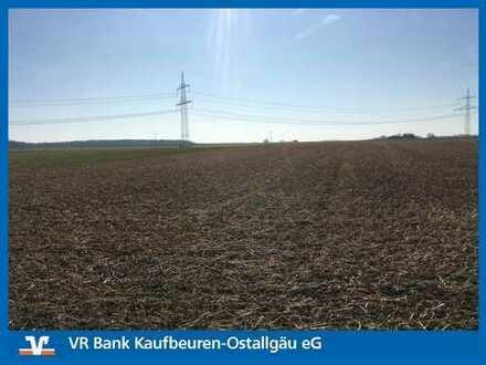 GELD VERGEHT - HEKTAR BESTEHT!!! Ackerfläche im Raum Reisensburg