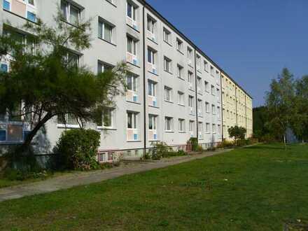 4 Zimmer Wohnung Möckern in Waldnähe