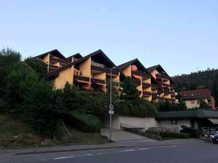 Modernisierte 1-Zimmer-Dachgeschosswohnung mit Balkon und EBK in Calw (Kreis)