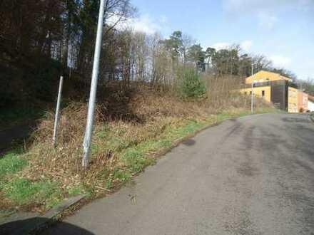 Baugrundstück am Waldrand in sehr ruhiger Lage in Homburg OT ca. 3 km zur UNI