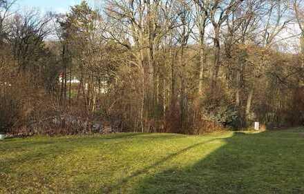 Großes Grundstück für EFH in Weißenborn