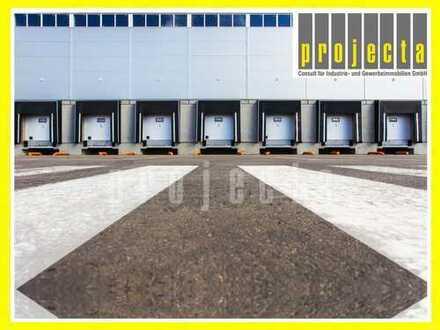 20.000 m² HALLE (TEILBAR AB 10.000 m²) * 10,50m UKB * 0175-290 90 71 *