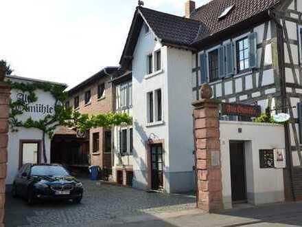 Appartment - In der romantischen Altstadt von Langen - Ideal für Wochenendheimfahrer - VON PRIVAT