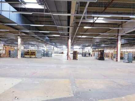 Großzügige und attraktive Lager- & Produktionshalle im Industriegebiet Großbeerenstraße | ebenerdig