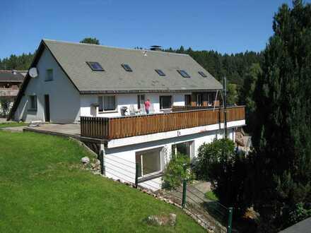 Ruhe und Erholung im Südschwarzwald - 3-Zimmer-Wohnung mit Einbauküche in Dachsberg