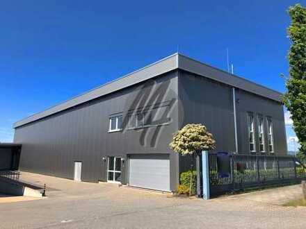 IM ALLEINAUFTRAG ✓ SOFORT VERFÜGBAR ✓ REGALIERT ✓ Lager (570 m²) & Büro (210 m²) zu vermieten