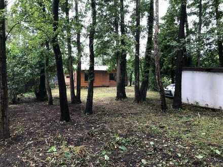Berlin-Hessenwinkel-Dämeritzsee Freizeitgrundstück mit Gartenhaus zu verpachten