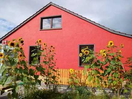 Erstbezug nach Sanierung: freundliches 4-Zimmer-Einfamilienhaus zur Miete in Minden, Minden