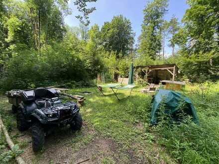 Wunderschönes, eingezäuntes Freizeitgrundstück/Wald mit Wohnwagen, Quad und herrlichem Baumbestand