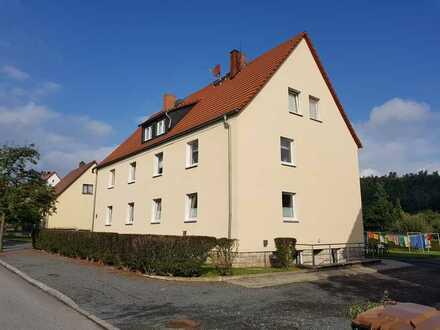 Vollständig renovierte 2-Raum-DG-Wohnung in Bad Gottleuba-Berggießhübel