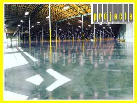10.000 m² Logistik+teilbar ab 5.000m²+0173 2749176+Provisionsfrei