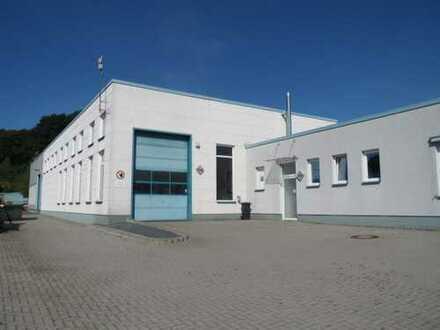 ca.400 m²- ebene LAGER- ggf. Produktionsfläche im GG Reissig- mit 4m Sektionaltoren