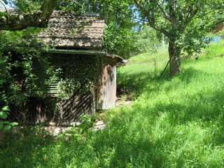 2 Garten-Wiesen-Baumgrundstücke