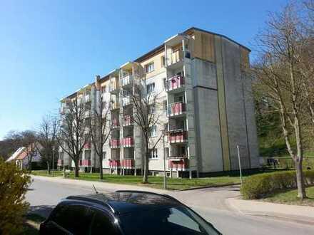 1 Raum Wohnung mit Balkon im Erdgeschoss